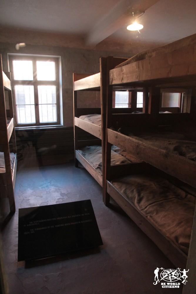 12-10-06 Auschwitz (44)