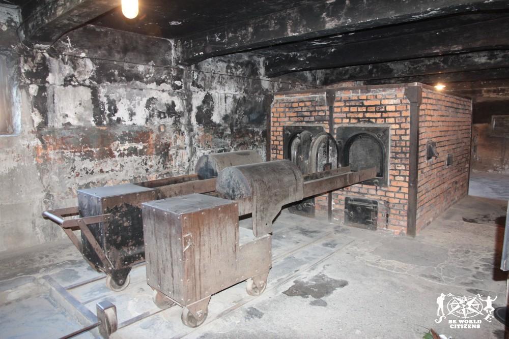 12-10-06 Auschwitz (53)