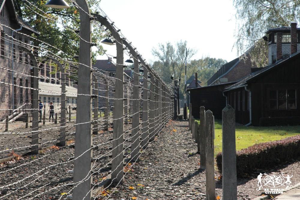 12-10-06 Auschwitz (57)