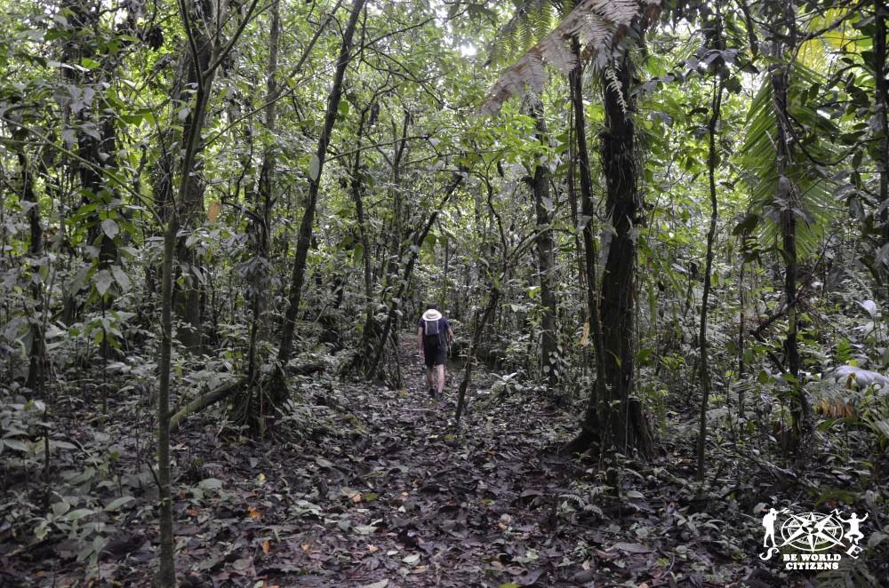 14-11-13a23 Costa Rica (151)