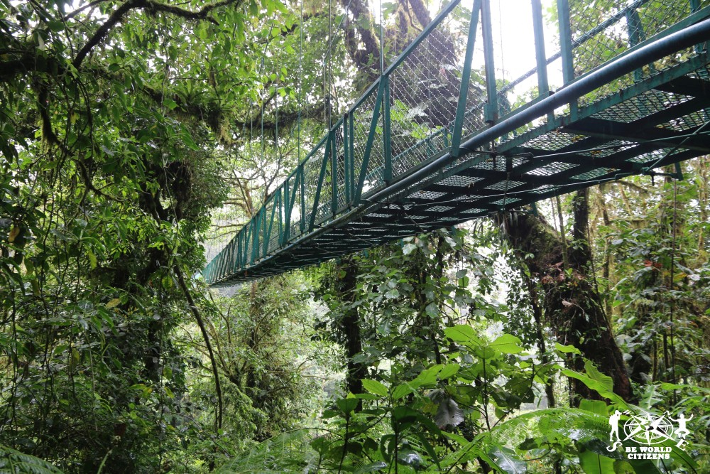 Traversata dal Centro fino alla costa Pacifica del Costa Rica ...