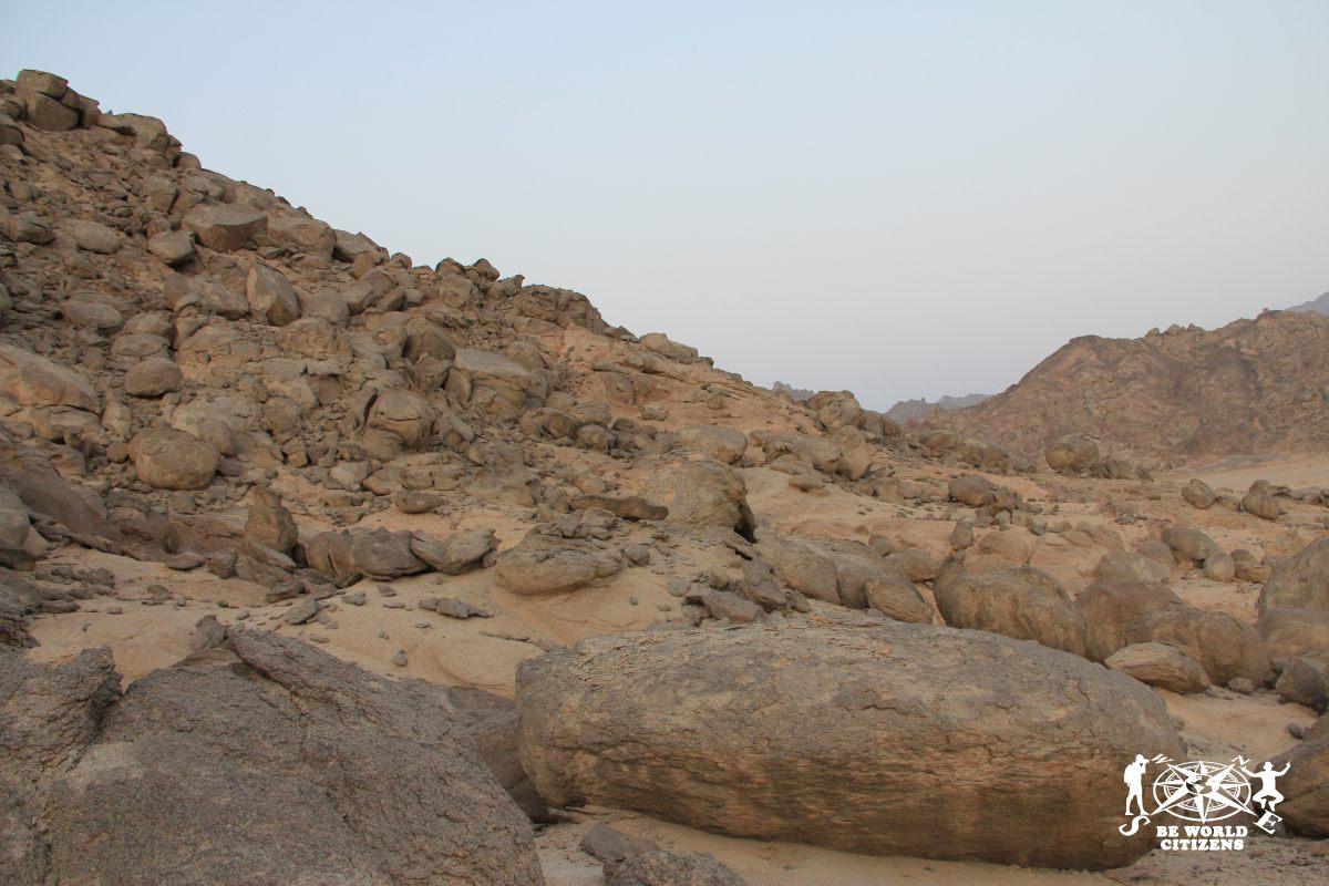2011.08.03-Motorata Su Quod Nel Deserto Del Sinai(18)