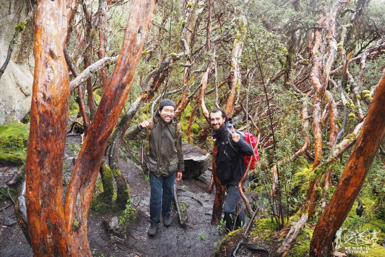 Ecuador: Parque Nacional Cajas