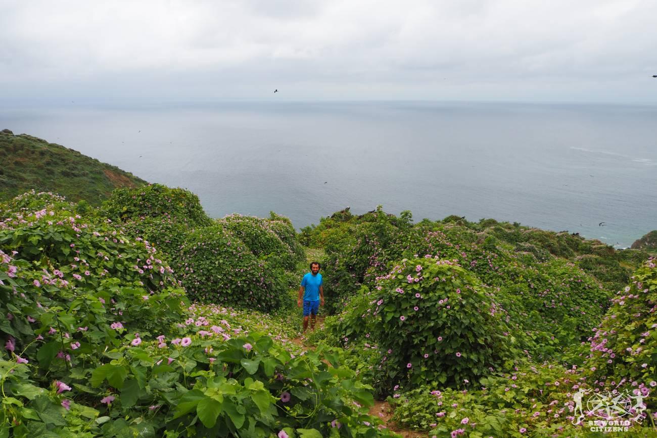 Ecuador: Isla de la Plata