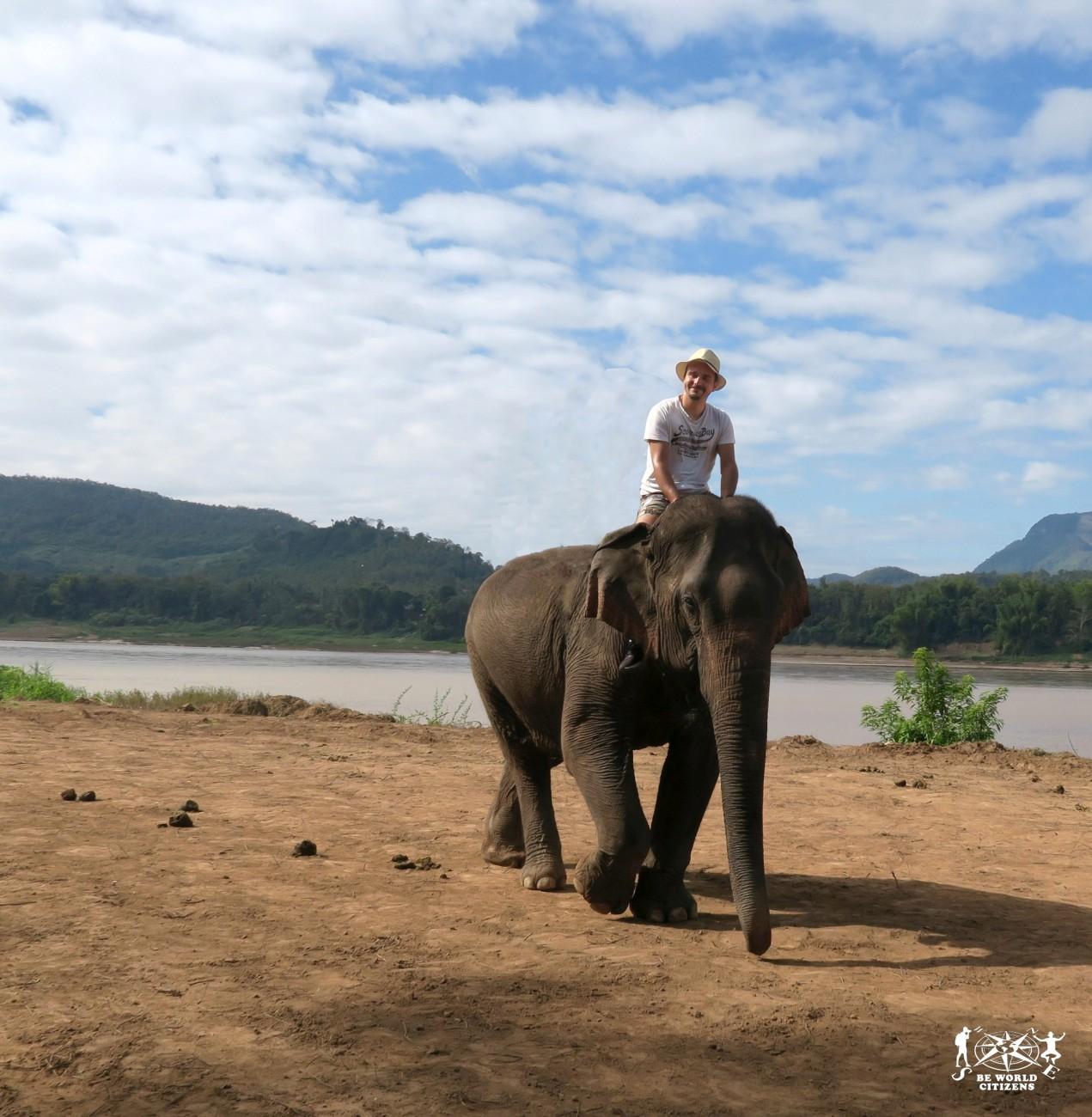 Laos: Luang Prabang, Elephant Park