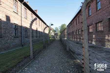 12-10-06 Auschwitz (50)