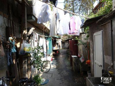 16.11.3-9 - Shangai, Cina(249)