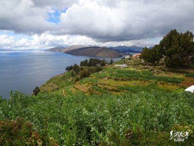 17.05.27-28- Isla Del Sol, Titikaka, Bolivia(29)