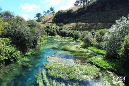 New Zealand: Blue Springs