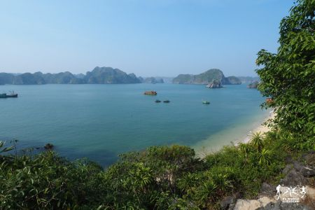 Vietnam: Halong Bay da Monkey Island