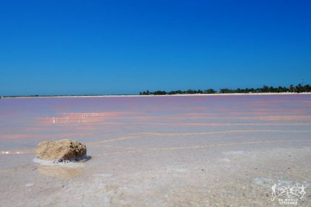 Messico: Las Coloradas