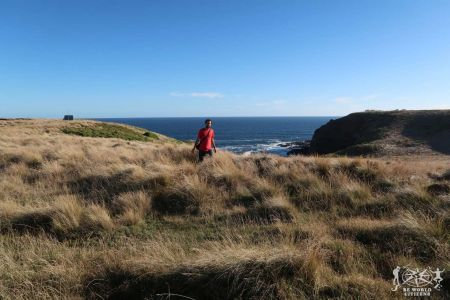 Australia: Phillip Island