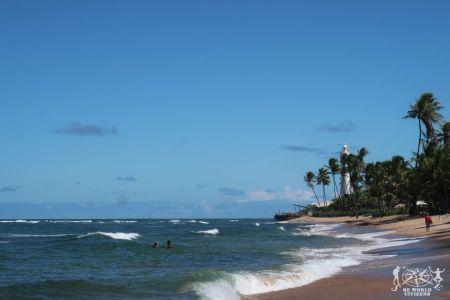 Praia Do Forte (3)