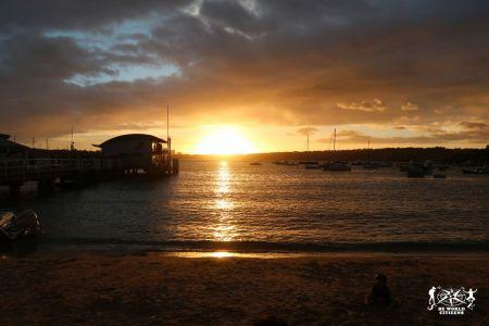 Australia: Sydney - Sunset