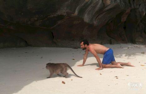 Thailandia: Phi Phi Island, Monkey Beach