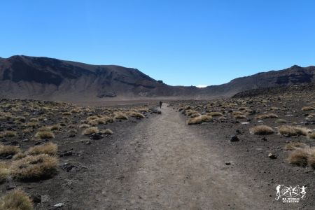 New Zealand: Tongariro Alpine Crossing