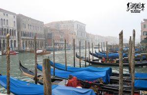 19. Venezia, Italia