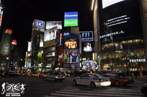 55. Tokyo, Giappone