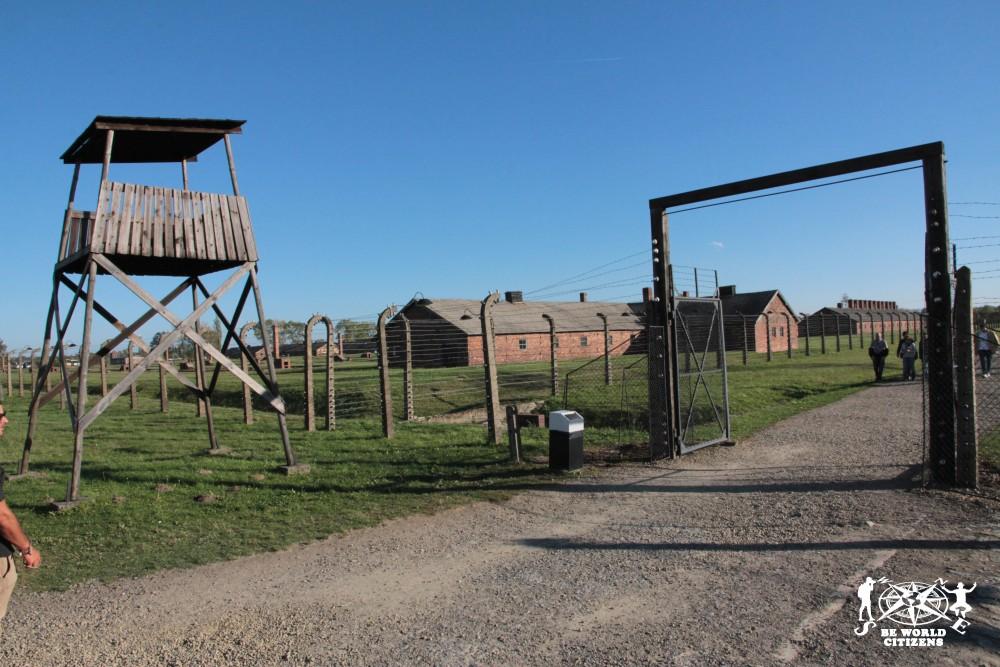 12-10-06 Birkenau (12)