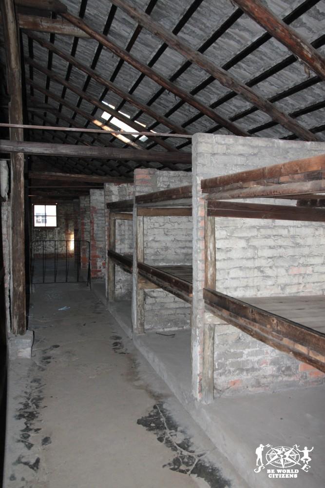12-10-06 Birkenau (15)