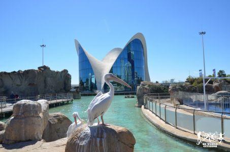 13-03-16a19 Valencia (110)