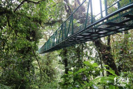 14-11-13a23 Costa Rica (187)
