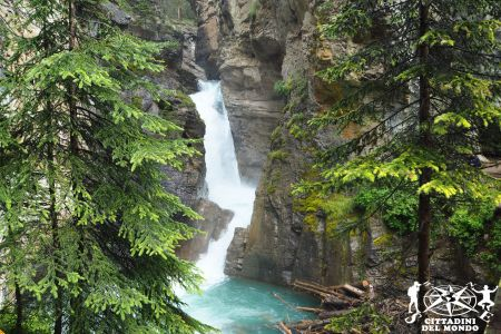 Galleria Canada: Johnston Canyon