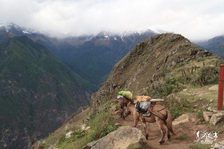 17.06.05-08 - Choquequirao, Perù (22)