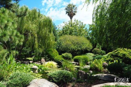 Adelaide. Japanese Garden