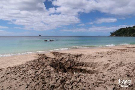 New Zealand: Hot Water Beach