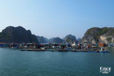 Vietnam: Villaggio dei pescatori ad Halong Bay
