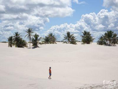 Brasile: Mangue Seco