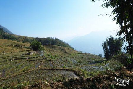 Vietnam: le risaie di Sapa
